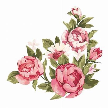 Border Flower Pink Corner Clipart Watercolor Transparent