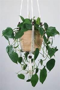 Suspension Pour Plante Interieur : suspension pour plante en macram bymadjo shanti d co ~ Teatrodelosmanantiales.com Idées de Décoration