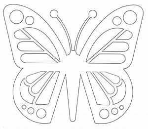 Papillon Papier De Soie : inviter des papillons la maison papa bricole et maman ~ Zukunftsfamilie.com Idées de Décoration