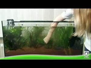 Aquarium Einrichten Beispiele : jbl aquarium einrichten youtube ~ Frokenaadalensverden.com Haus und Dekorationen