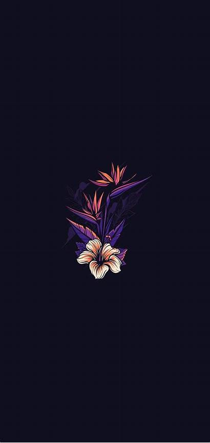 Phone Wallpapers Dark Amoled Flower Iphone Painting