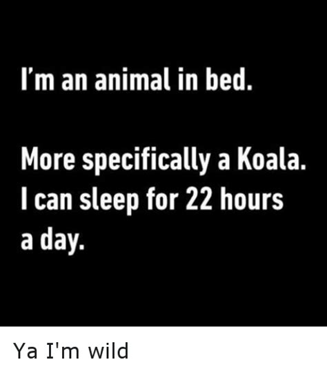 Animal In Bed Meme - 25 best memes about im an animal in bed im an animal in bed memes