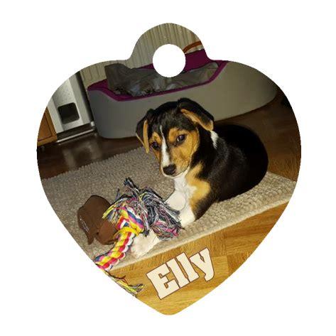 Vom Eigenen Foto by Hundemarke In Herzform Mit Eigenem Foto Designen By Anfalas