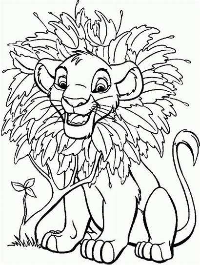 Simba Lion Coloring King Disney Colorir Ausmalbilder