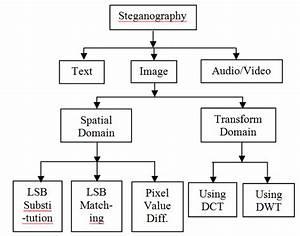 Fig2  Basic Types Of Steganagraphy Types Ofsteganography