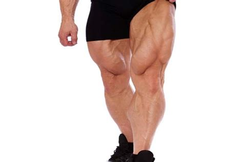 The gastrocnemius and the underling soleus. Calf Muscles - Pathology, Strain, Diagnosis, Treatment & Exercises   MuscleSeek