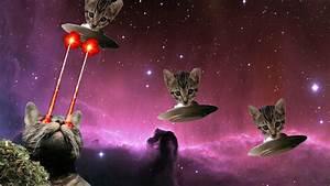 Laser Cat by Dilbert92 on DeviantArt
