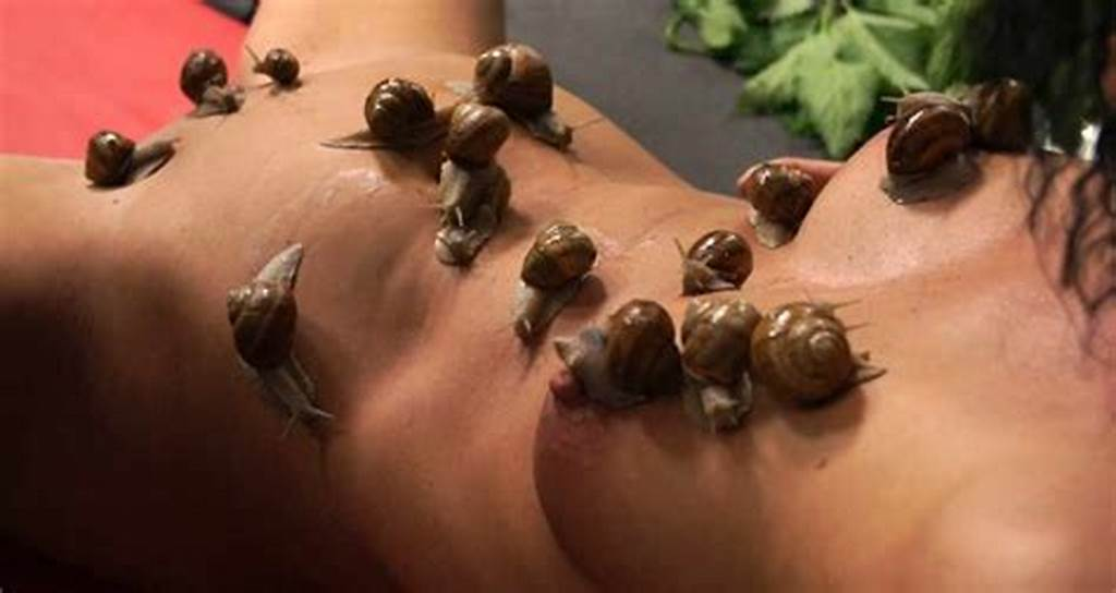 #Torture #With #Snails