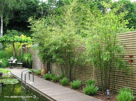 bambus sichtschutz garten garten sichtschutz bambus luxus sichtschutz terrasse