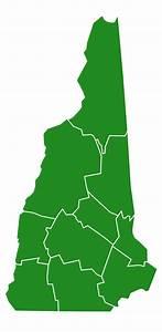 File:New Hampshire Democratic Presidential Primary ...