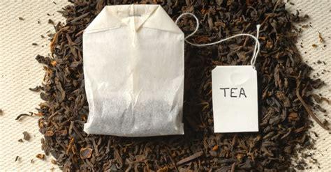 canapé allemand le sachet de thé un article d 39 omnilogie fr