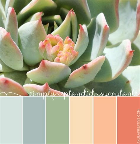 succulent inspired color palette   minty green