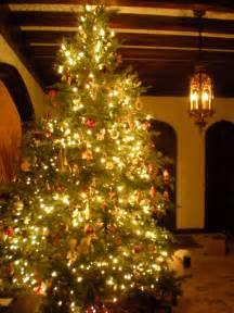 file christmas tree jpg wikimedia commons