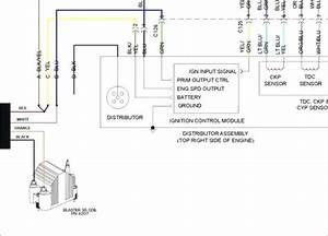 2005 Honda Accord Wiring Diagram