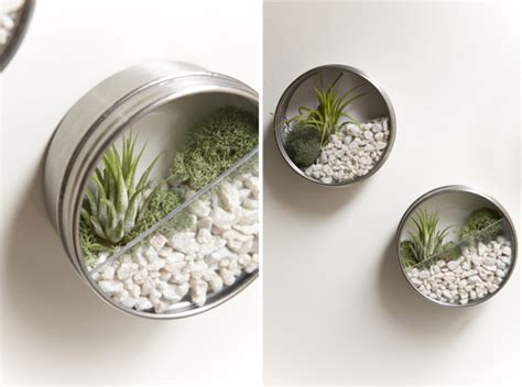 How To Make Your Own Vertical Garden by Diy Terrarium Magnets Make Your Own Tiny Vertical Garden