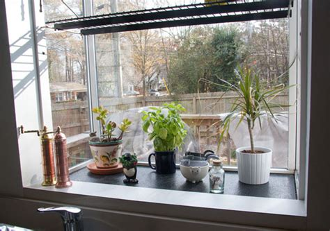 House Plants For Kitchen Window by The Greenhouse Windows Kitchen Design Idea Hac0