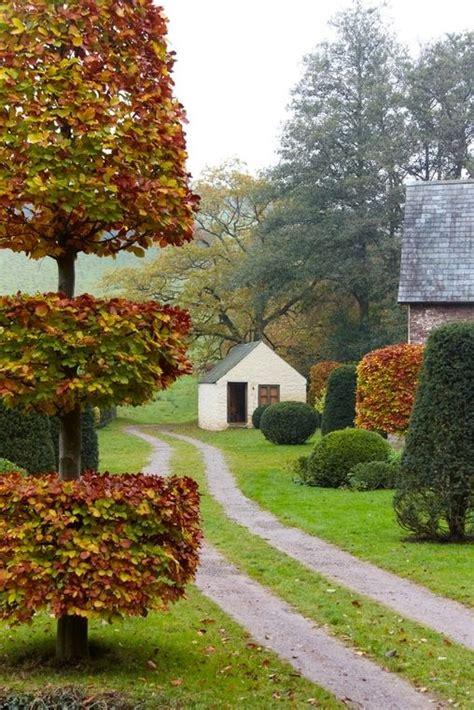 garden design south wales 47 best drive way trees landscape ideas blerick tree farm images on pinterest