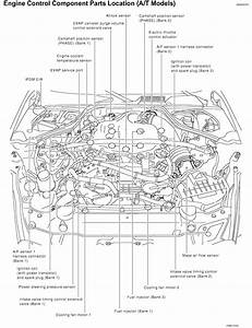 Infiniti G35 Fuel Pump Problems Wiring Diagrams