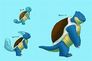 Image Gallery evolved squirtle