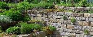 Steine Zum Mauern Preise : steine zum bepflanzen beton garten steine mit sukkulenten bepflanzen steingarten pinterest ~ Orissabook.com Haus und Dekorationen