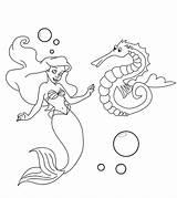 Seahorse Coloring Mermaid Printable Sea Horse Ones Momjunction Adults Coloringbay sketch template
