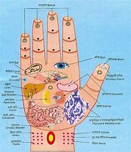 Best acupressure points chart ideas and images on bing find what