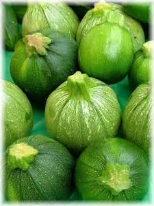 Types of Summer Squash Varieties