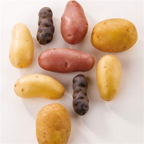 comment cuisiner la pomme de terre comment cuire pomme de terre beautiful quand luail