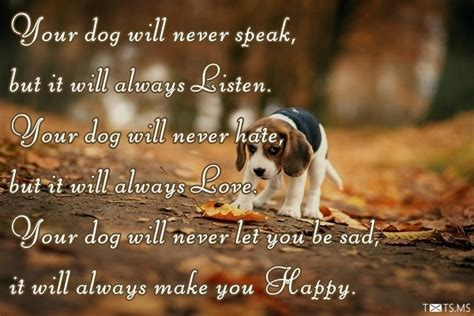 congratulations   pet wishes messages quotes images  facebook whatsapp picture sms