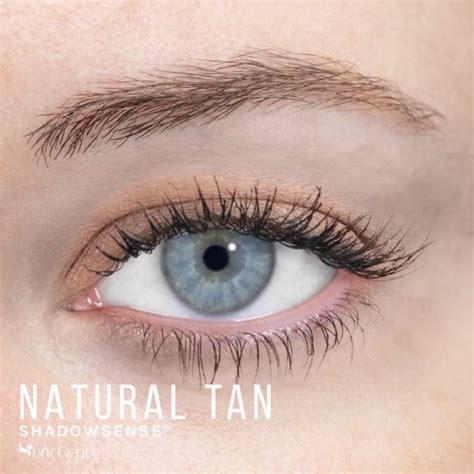 Anti Wrinkle Cream Dermalogica