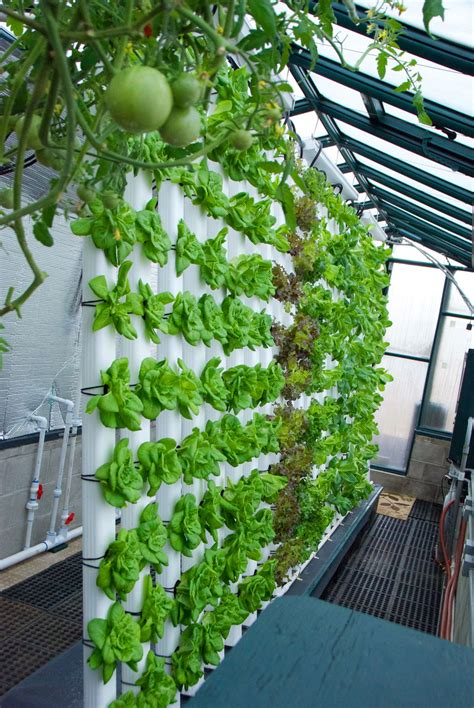 Vertical Garden Aquaponics by Our 80 186 Vertical Aquaponics System Is All About Saving