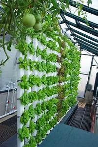 Vertikal Garten System : our 80 vertical aquaponics system is all about saving ~ Sanjose-hotels-ca.com Haus und Dekorationen