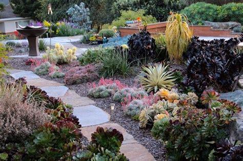 Giardini Con Piante Grasse  Piante Grasse Creare