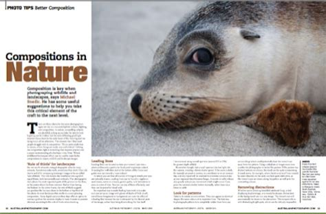 Wildlife & Nature Photography Articles  Michael Snedic