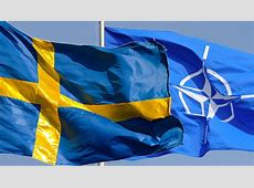 NATO News NATO Deputy Secretary General stresses