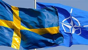 Image result for swedish nato countries