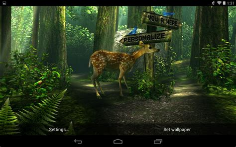 Forest Animals Live Wallpaper - forest live wallpaper wallpapersafari