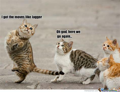 Dancing Cat Meme - cat dancing by smoshwolf meme center