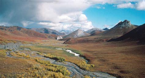 alaska wildlife refuge arctic national drilling oil alaskan anwr wilderness bill plan trump senate tax refuges nature land drill cancellation