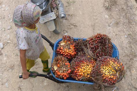 travail des enfants esclavage moderne le n 176 1 mondial de