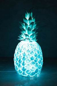 Shop for great room decorations like this Pineapple Light