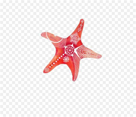 drawing watercolor painting shopping clip art starfish