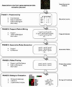 Association rules from gene expression data extraction ...