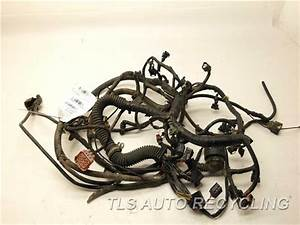 2002 Land Rover Range Rover Engine Wire Harness