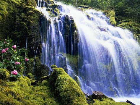 Waterfall Nature Wallpaper 2560x1600 3760 : Wallpapers13.com