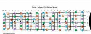 Guitar Fretboard With Frets Numbered And Notes Named