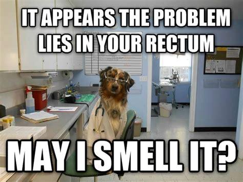 Dog Doctor Meme - doctor dog meme guy