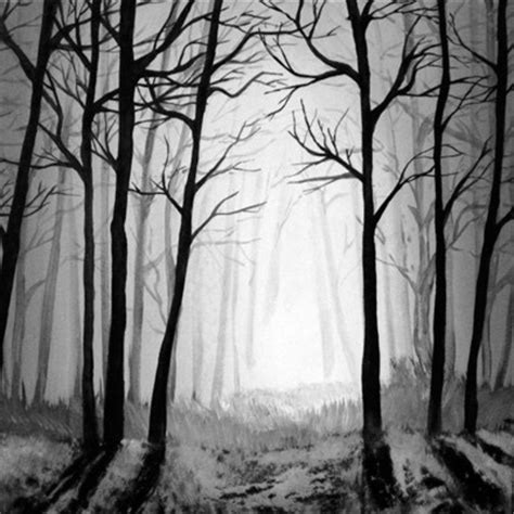 Histoires Au Coeur De La Forêt
