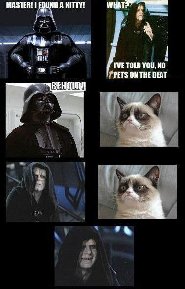 Star Wars Emperor Meme - friday fun meet tard the grumpy cat cats friday fun and wings
