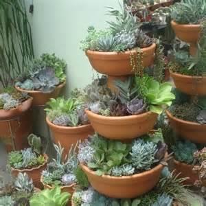 Succulent Container Garden Ideas